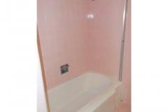 15- hall bath