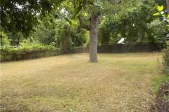3- back yard